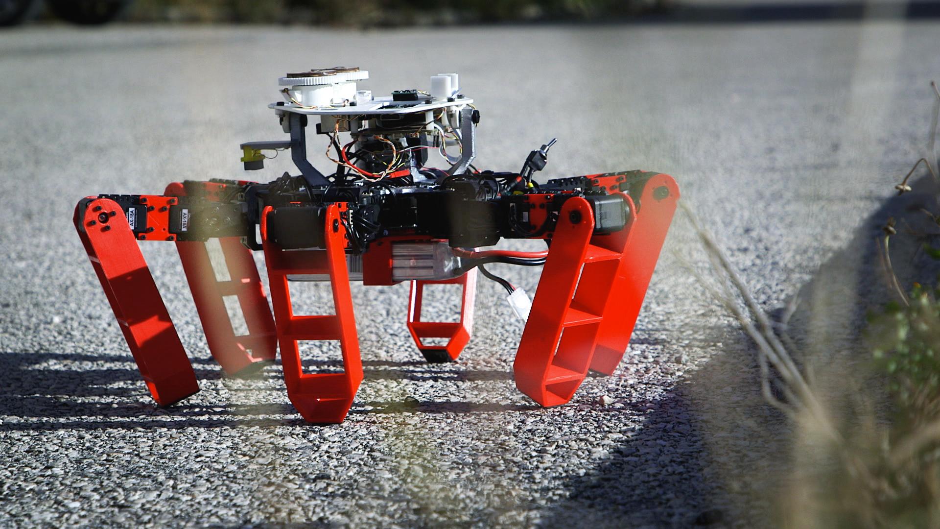 Robot à six pattes dehors