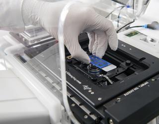 Laboratoire d'Immunopathologie et chimie thérapeutique
