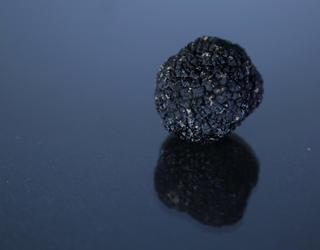Truffe noire sur surface réfléchissante