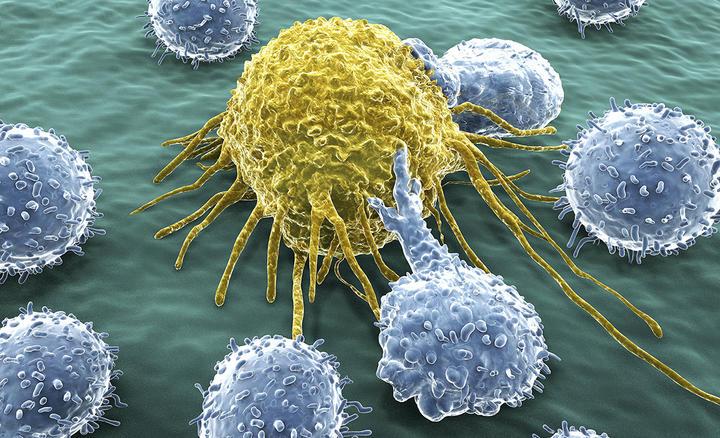 Lymphocytes attaquant une cellule cancéreuse