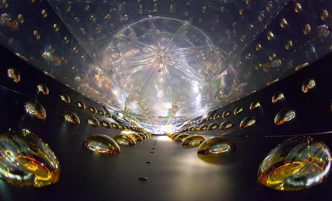 Ligne de photomultiplicateurs du détecteur de neutrino de Daya Bay (Etats-Unis)