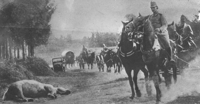Chevaux et cavaliers autrichiens évitant un cadavre équin en 1914.