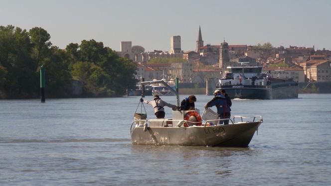 Opération de prélèvement de sédiments dans le Rhône.