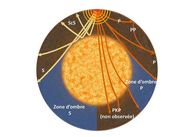 Vue schématique des principales phases sismiques P et S.