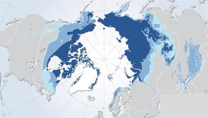 permafrost (cnrs) dans Altermondialisme
