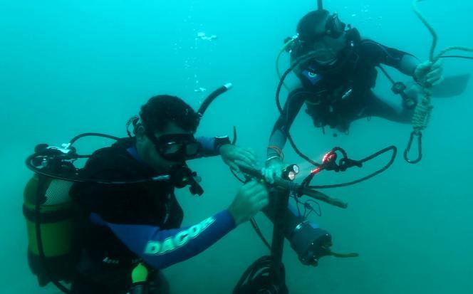 Hydrophone marin