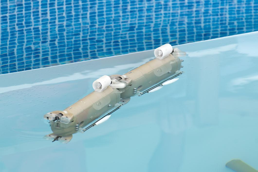 Robot-poisson Angels inspiré des poissons électriques