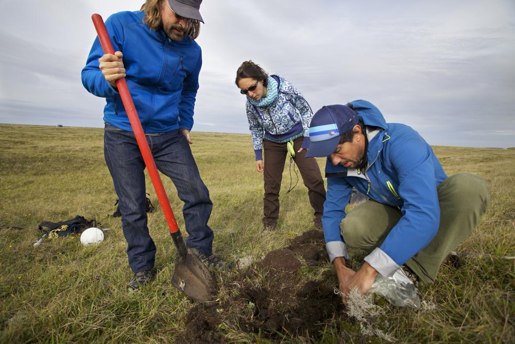 Prélèvement d'échantillons de sable sur l'isthme de Miquelon-Langlade