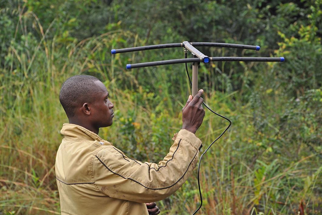 Antenne GPS servant à localiser les singes mandrills équipés d'une collier RFID