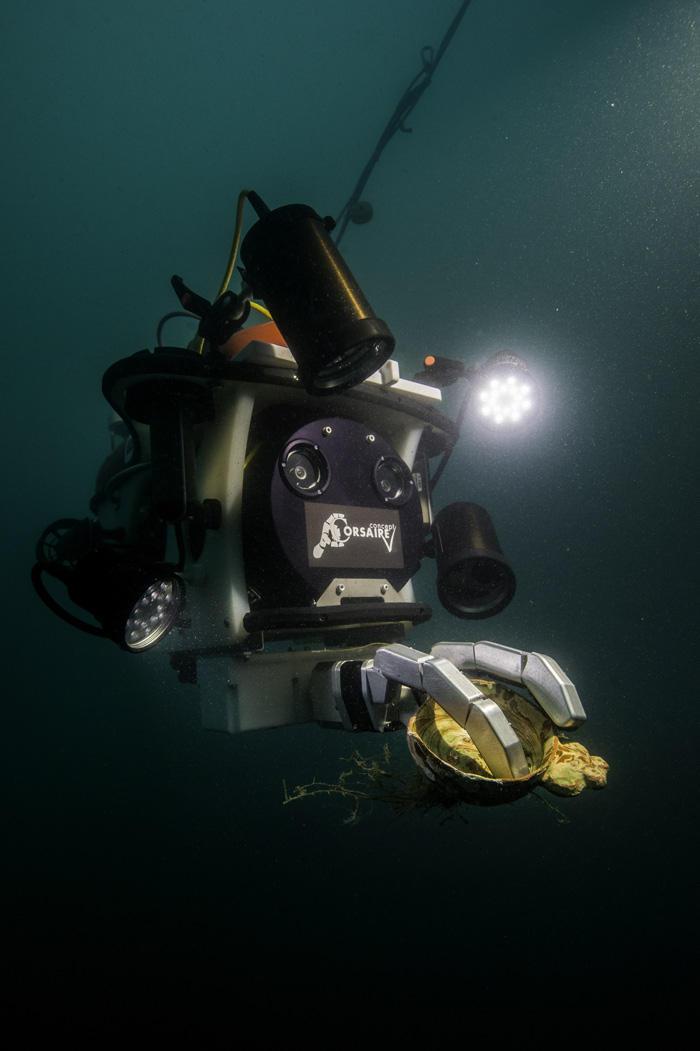Robot dans une eau sombre. Il tient un objet archéologique dans une pince qu'il éclaire avec sa lampe frontale.