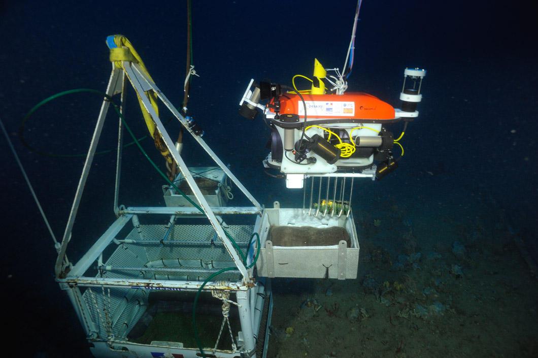Le robot dépose un objet dans une caisse sous l'eau.