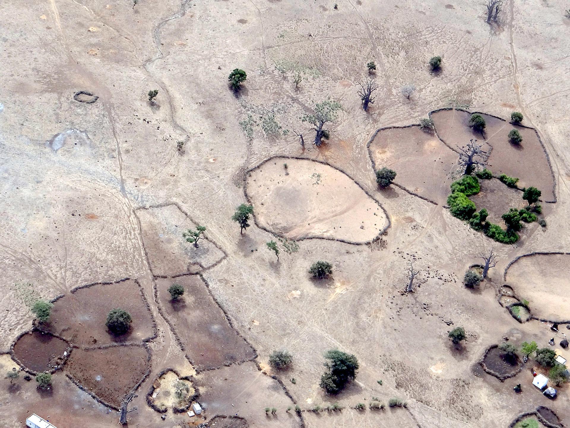 Parcs à bétail traditionnels au Sénégal, région de Thiès.