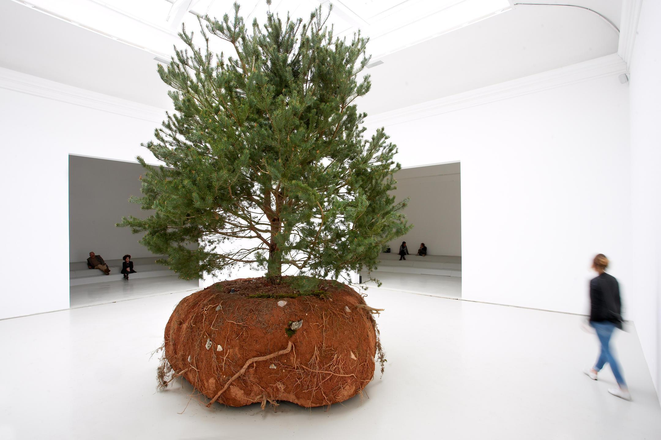 Rêvolutions, Biennale de Venise 2015, Pavillon français
