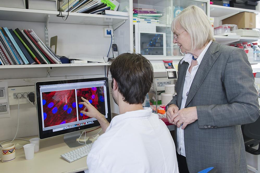 Margaret Buckingham et Nicolas Diguet en train d'étudier des cellules au microscope
