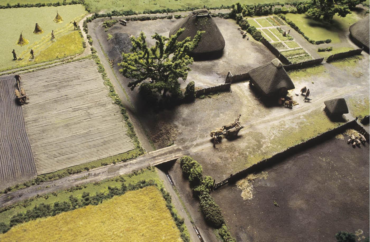 Reconstitution d'une ferme gauloise.