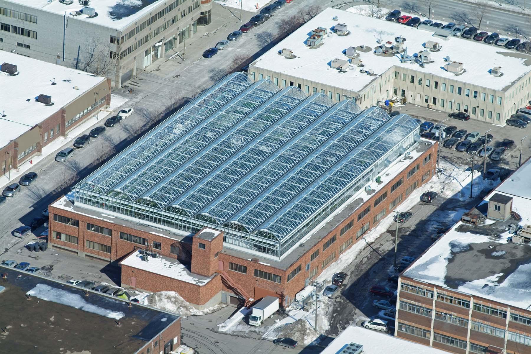 La Lufa Farm, première ferme urbaine construite en 2010 à Montréal