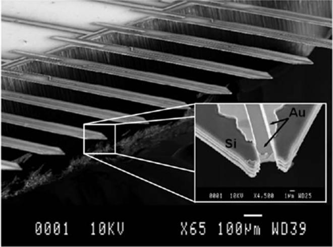 Microscopie à balayage optique