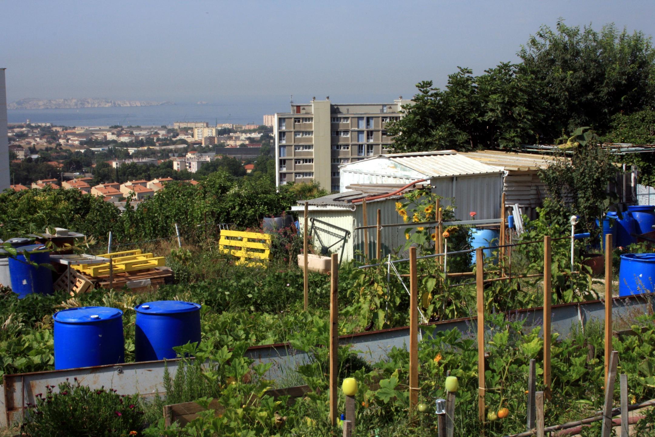 Jardins ouvriers du Castellas à Marseille