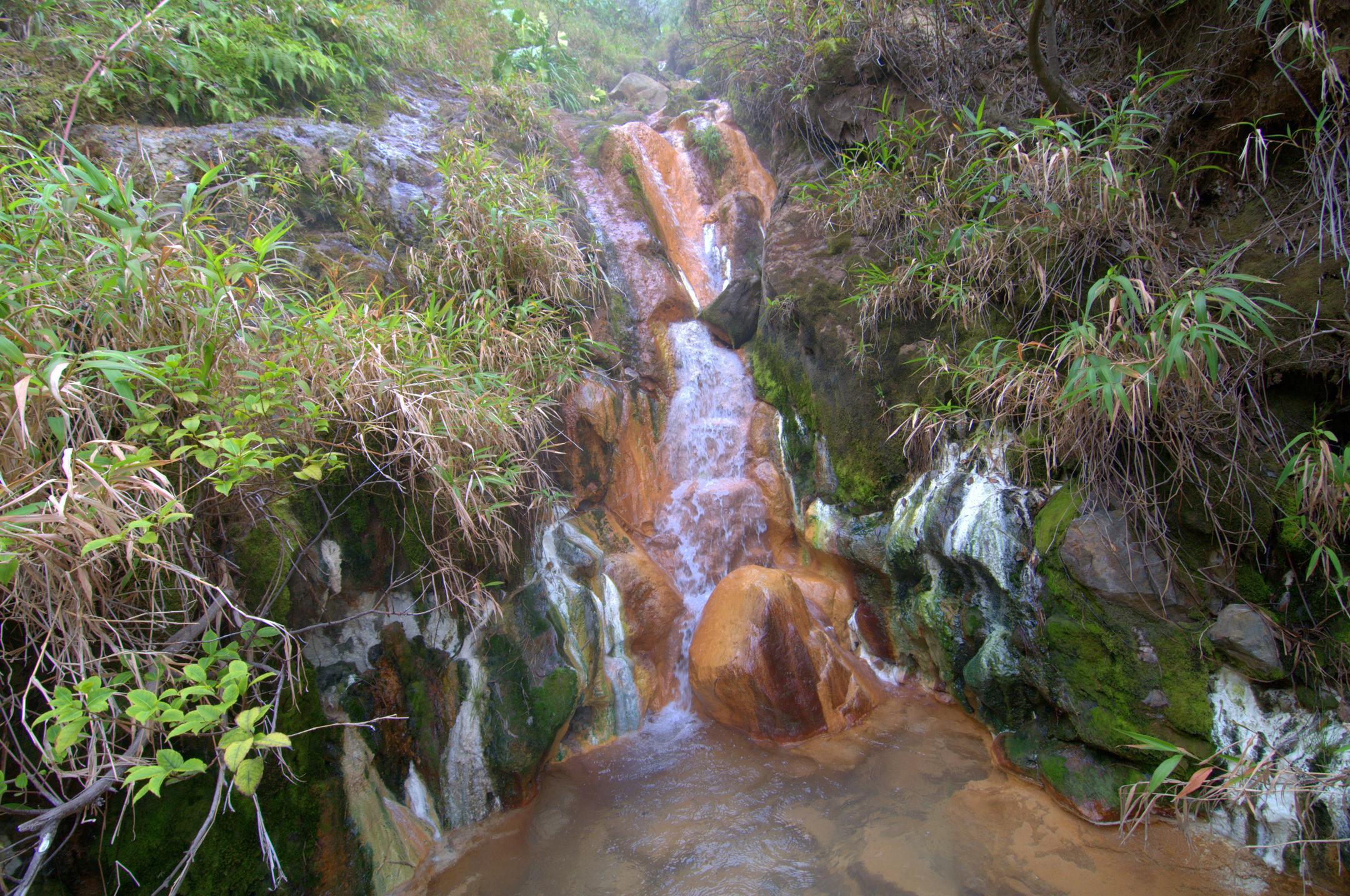 Source thermale du Galion. Volcan La Soufrière, Guadeloupe.