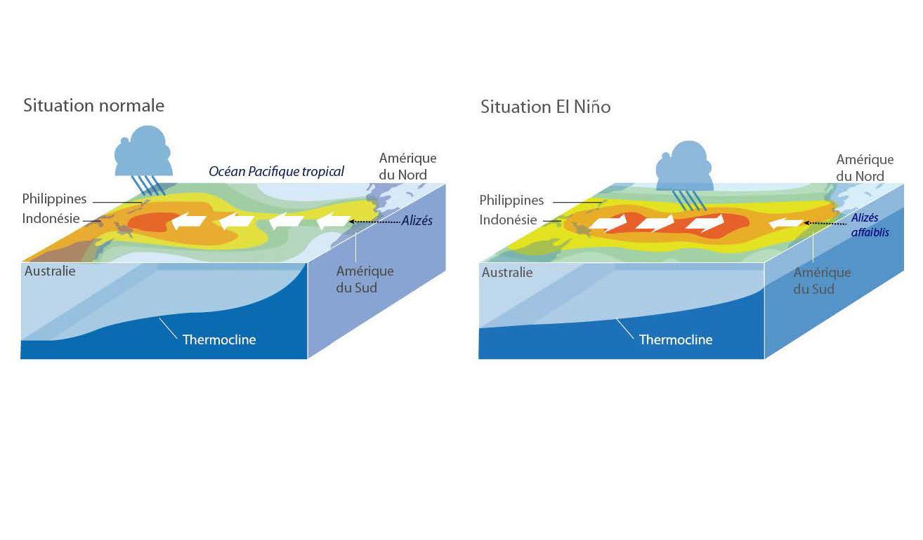 Phénomène El Nino