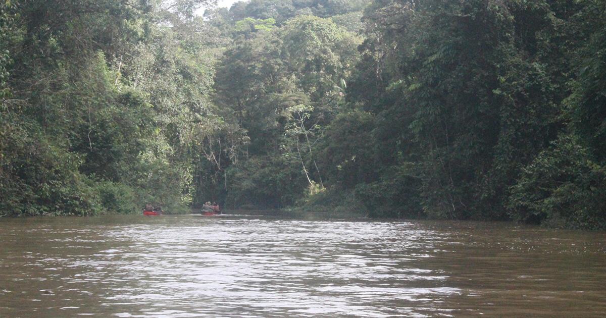 Nos 450 km sur les rivières de Guyane, étape 1