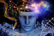 Aux sources de la conscience