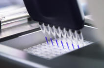 Gros plan de pipettes utilisées dans une expérience de biologie moléculaire