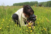 Observatrice dans le cadre d'un projet Vigie Nature
