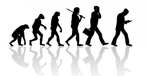 Dessin humoristique retraçant l'évolution de l'homme