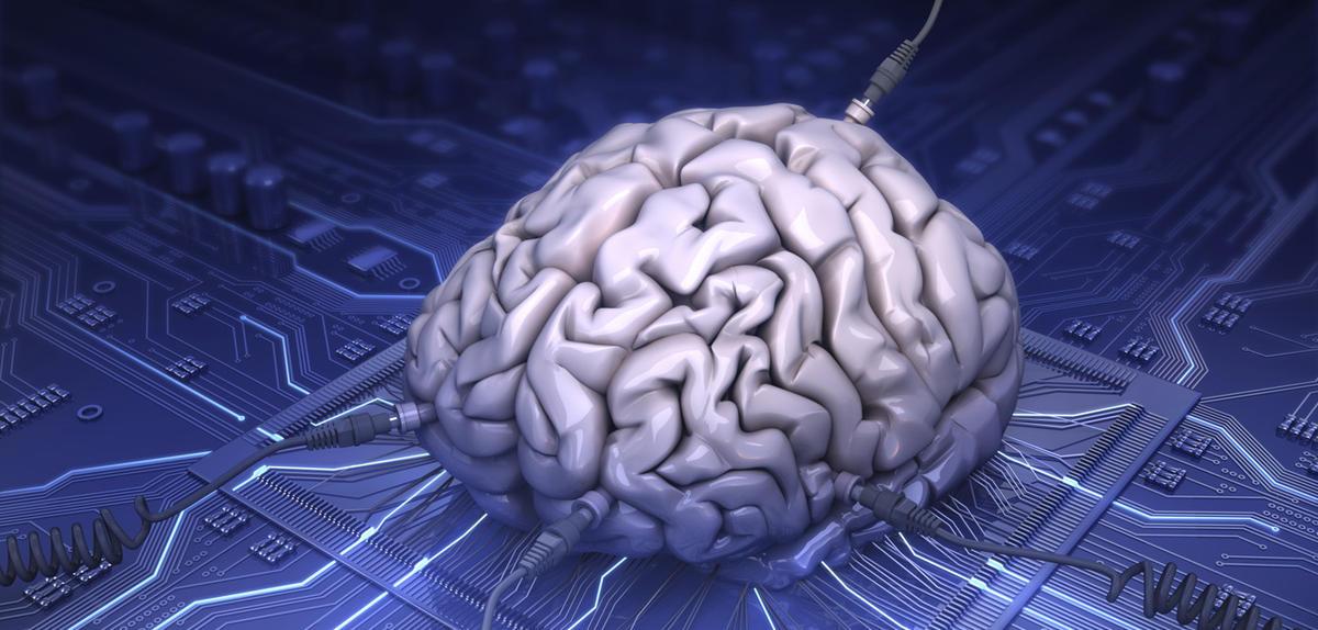 Pourquoi notre mémoire est-elle si fragile
