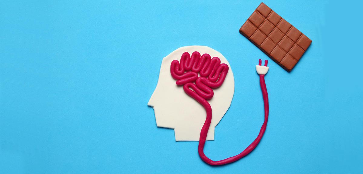 Comment le cerveau gère notre appétit