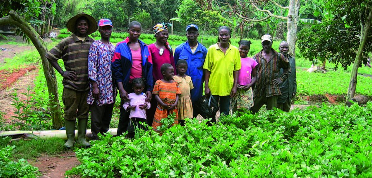 Une famille de maraîchers à Nkolondom, au Cameroun
