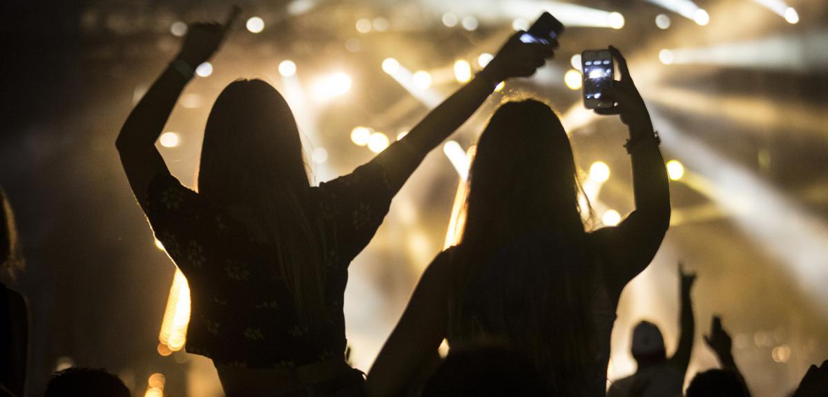 Public lors d'un concert