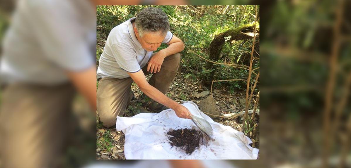 Les Maures, havre d'une biodiversité insoupçonnée