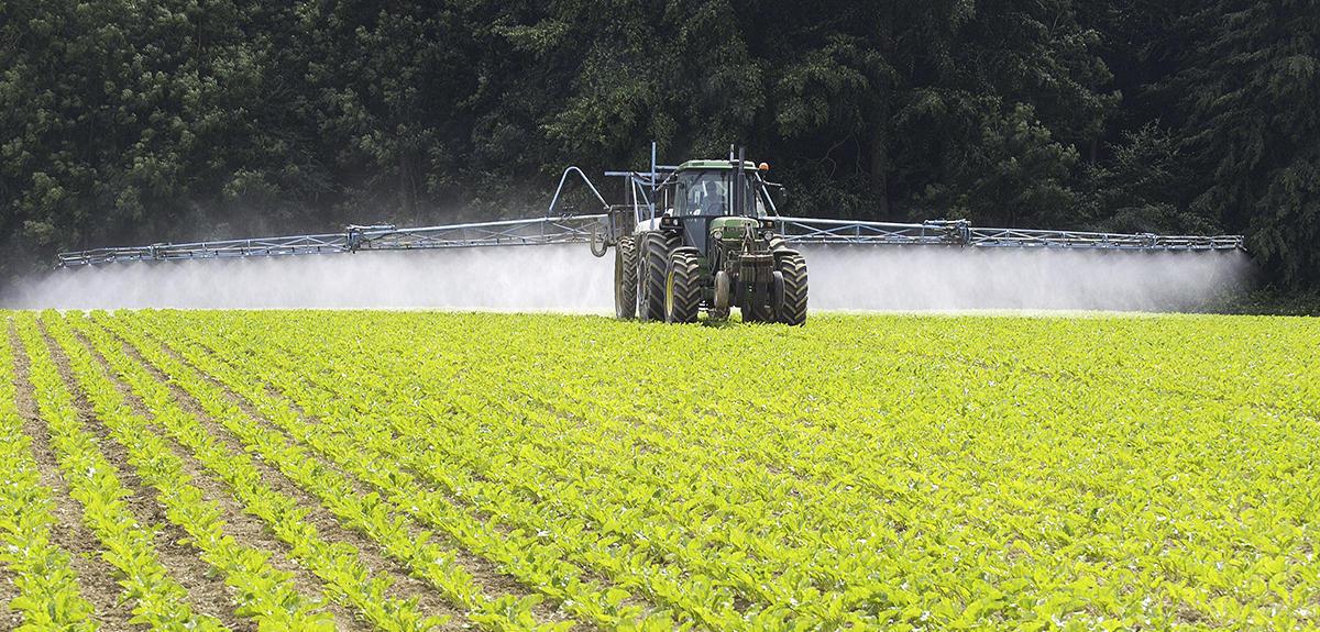 Quand le productivisme nuit l 39 agriculture cnrs le journal for L agriculture