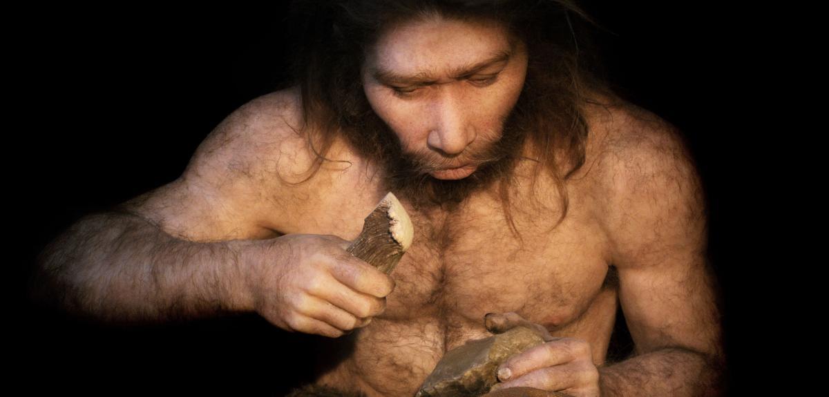 Homo Néanderthalensis